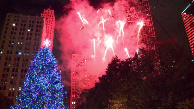 wgn christmas tree lighting ceremony in chicago's millennium park on nov 18 2016 - クリスマスツリー点灯式点の映像素材/bロール