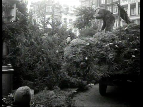 stockvideo's en b-roll-footage met christmas tree market on singel / amsterdam noordholland netherlands - noord holland