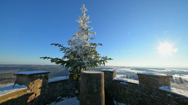 christmas tree on observation tower with sun in winter, katzenbuckel, waldbrunn, odenwald, baden-württemberg, germany - pinaceae stock videos & royalty-free footage