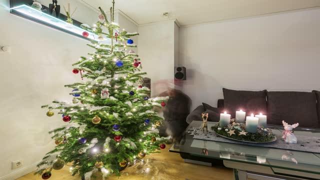 christmas tree timelapse - pinaceae stock videos & royalty-free footage