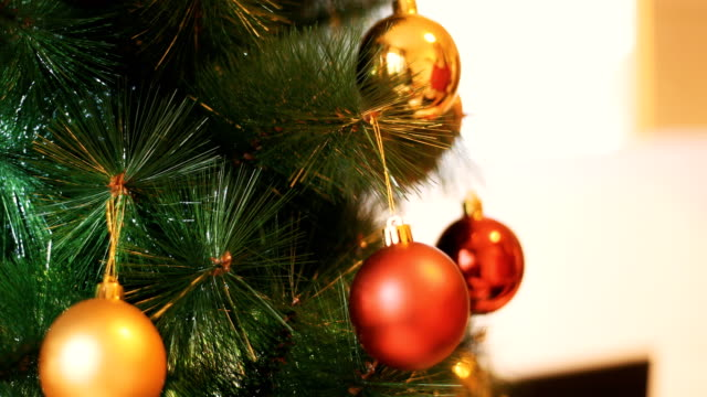 christmas tree - putting stock videos & royalty-free footage