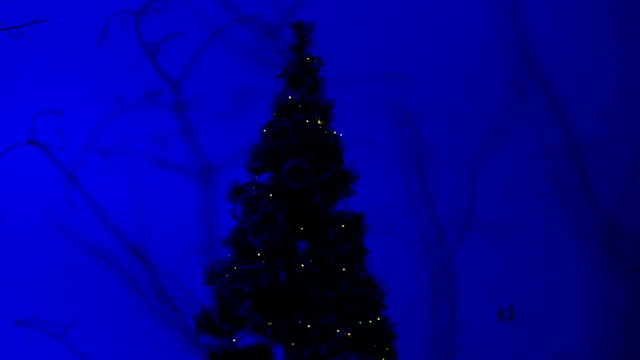 christmas tree - month stock videos & royalty-free footage