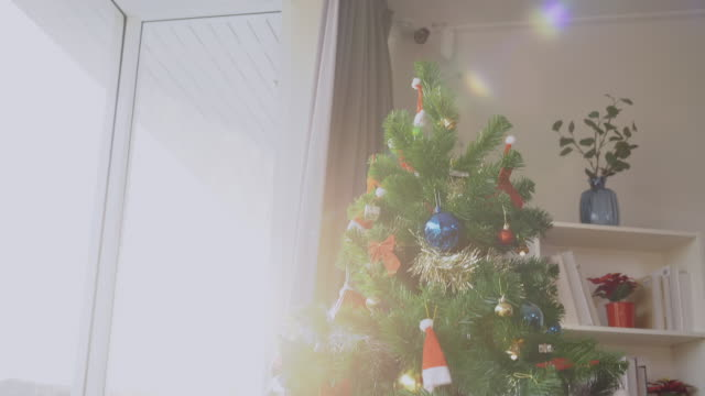 christmas tree with sunset - crane shot stock videos & royalty-free footage
