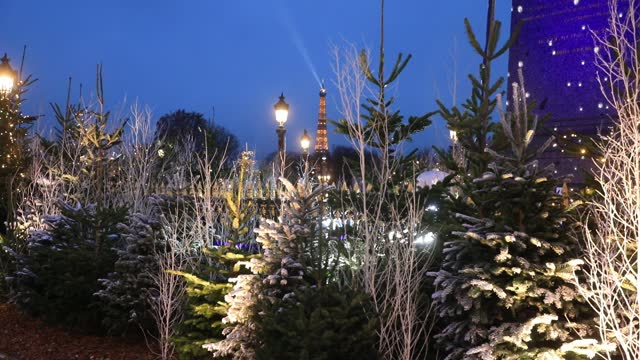 christmas trees and the eiffel tower in the background during the installation of christmas decorations on the 'place de la concorde' on december 5,... - daydreaming stock videos & royalty-free footage