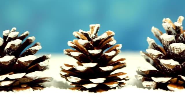 Christmas Trees, camera pan