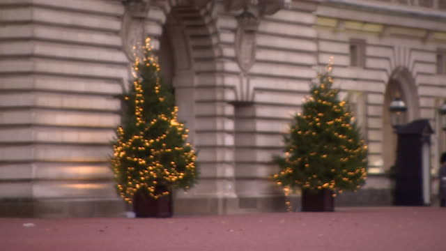 christmas trees outside buckingham palace - buckingham stock videos & royalty-free footage