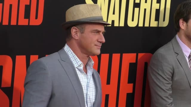 christopher meloni at the premiere of 20th century fox's 'snatched' - arrivals on may 10, 2017 in westwood, california. - ウエストウッドヴィレッジ点の映像素材/bロール