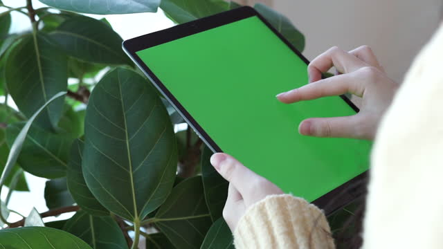 chroma key - hands using tablet pc / south korea - index finger stock videos & royalty-free footage