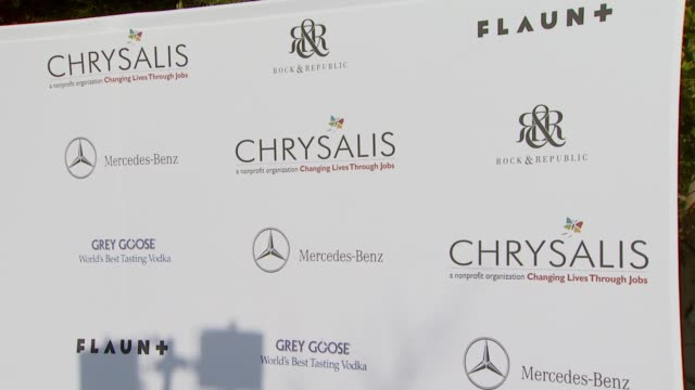 chrysalis backdrop at the chrysalis butterfly ball at a private residence in los angeles, california on june 2, 2007. - chrysalis butterfly ball video stock e b–roll