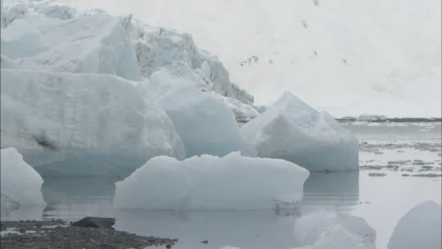 chunks of ice float in prince william sound, alaska. - prince william sound stock videos and b-roll footage