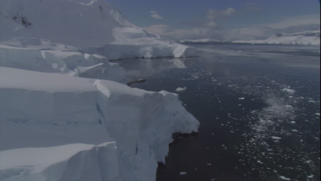 chunks of ice float near antarctic ice shelf. available in hd - bbc stock videos and b-roll footage
