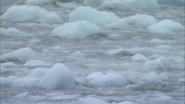 ha chunks of ice floating in ocean waves / greenland - block shape stock videos & royalty-free footage