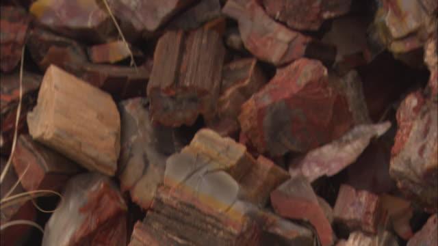 vidéos et rushes de chunks of petrified wood litter the ground of the petrified forest national park. - arizona