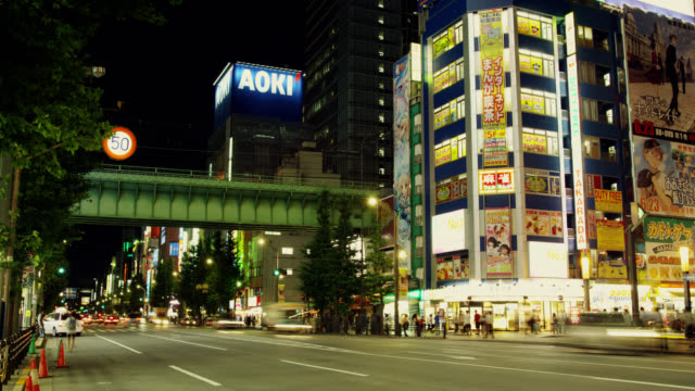 WS T/L JR Chuo line railway on bridge crossing Chuo Dori in Akihabara Electric District / Tokyo, Tokyo-to, Japan