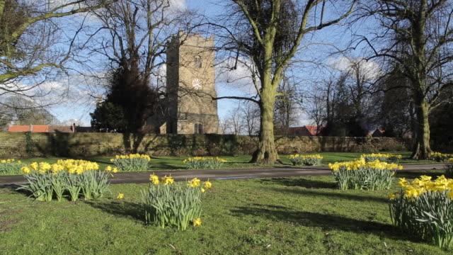 church at teversal village & daffodils (narcissus), nottinghamshire, england, uk, europe - etwa 12. jahrhundert stock-videos und b-roll-filmmaterial