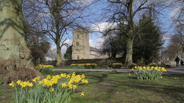 stockvideo's en b-roll-footage met church at teversal village & daffodils (narcissus), nottinghamshire, england, uk, europe - rond de 12e eeuw
