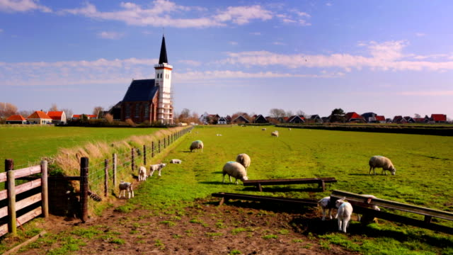 church of den hoorn on texel island in the netherlands - village stock videos & royalty-free footage