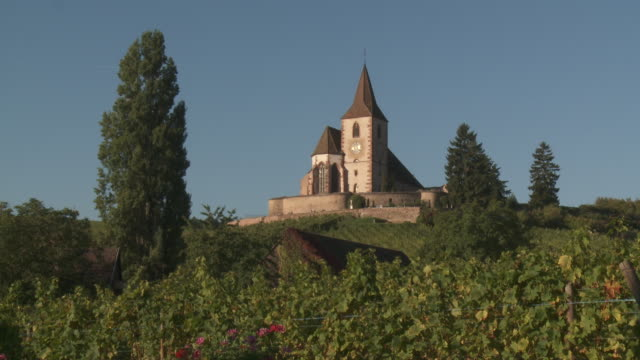 Church of Hunawihr across Vineyard
