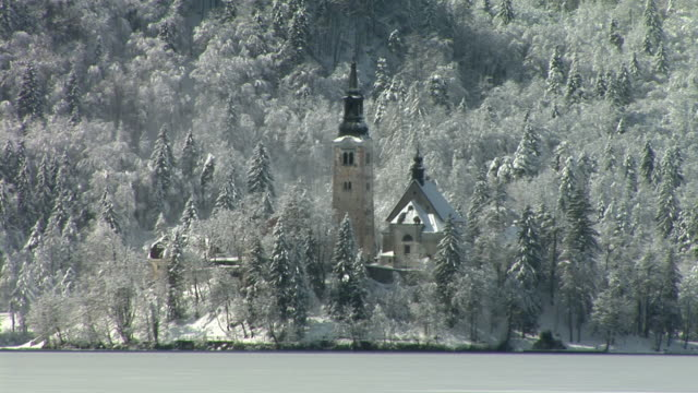 ws, church of the assumption of mary surrounded with snow covered trees, island of lake bled, gorenjska, slovenia - lago di bled video stock e b–roll