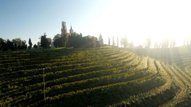 aerial church on top of a vineyard - prekmurje stock videos & royalty-free footage