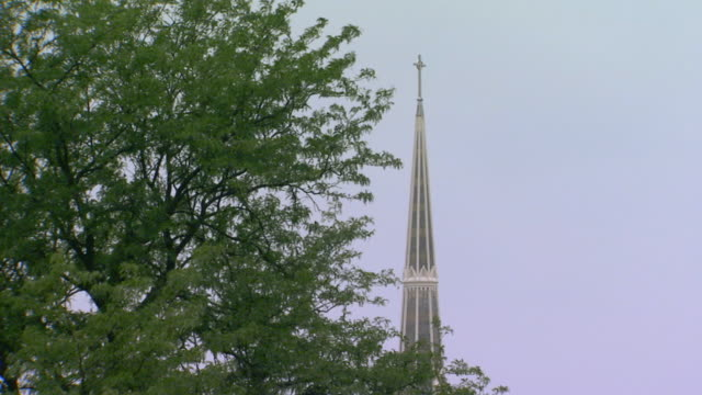 Church steeple set behind a big beautiful tree