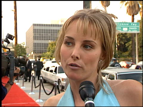 chynna phillips at the blockbuster entertainment awards at pantages theater in hollywood, california on june 3, 1995. - pantages theater stock videos & royalty-free footage