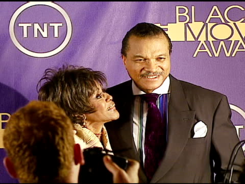 cicely tyson winner distinguished career achievement award and billy dee williams at the 2006 tnt black movie awards press room at wiltern theater in... - wiltern theater stock videos and b-roll footage