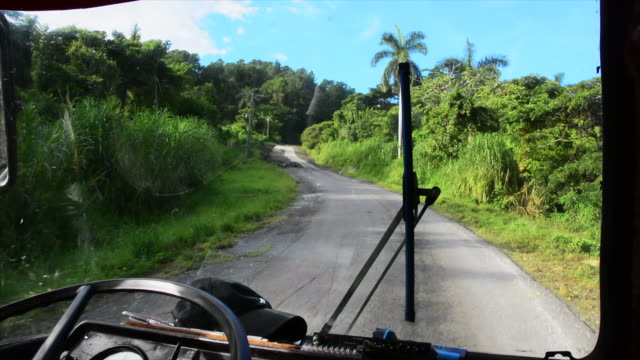 vídeos y material grabado en eventos de stock de an obsolete bus drives towards the 'el nicho' natural park in the escambray mountains the trip is part of a privately organized tour with national... - eco tourism