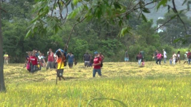 vídeos de stock e filmes b-roll de cientos de venezolanos siguen arriesgandose a cruzar ilegalmente la frontera hacia colombia, ignorando las restricciones que ambos países han... - américa latina
