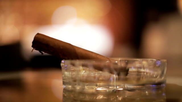 cigar in the ashtray - sigaro video stock e b–roll