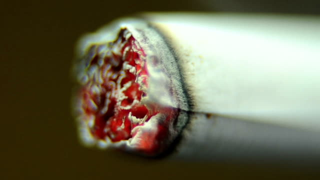 cigarette burning - smoking issues stock videos and b-roll footage
