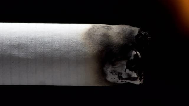 vídeos de stock e filmes b-roll de cigarette burning - smoke physical structure