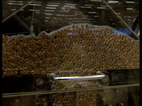 vídeos de stock, filmes e b-roll de cigarettes move through automated production line - abuso de substâncias