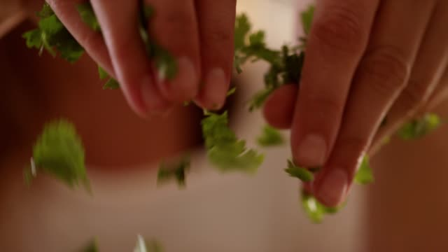 cilantro sprinkle - gourmet stock videos & royalty-free footage