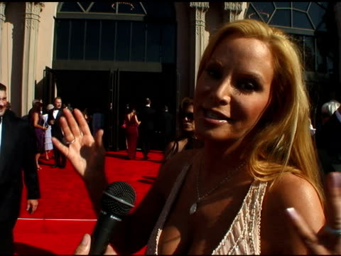 cindy margolis at the 2004 emmy creative arts awards red carpet at the shrine auditorium in los angeles, california on september 12, 2004. - shrine auditorium stock videos & royalty-free footage
