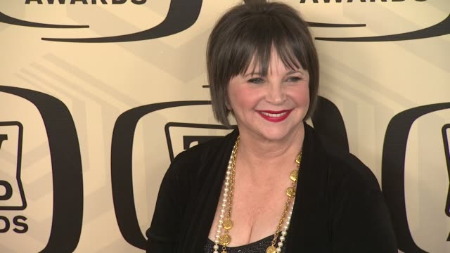 cindy williams at tv land awards 10th anniversary arrivals at lexington avenue armory on april 14 2012 in new york ny - tv land awards stock videos and b-roll footage