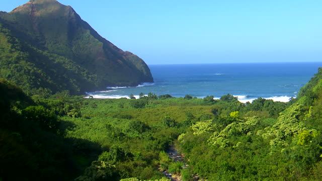 cineflex hawaii 07 - maui stock videos & royalty-free footage