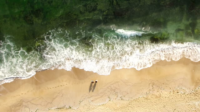 Cinemagraph Beach Aerial View