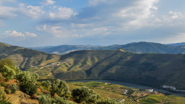 cinemagraph of douro valley at sunset - portugal stock videos & royalty-free footage