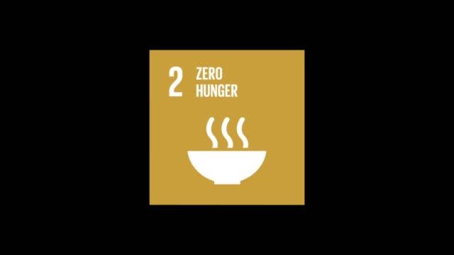 circle with box zero hunger - zero stock videos & royalty-free footage
