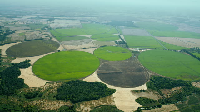 Circular Fields In Rural Landscape