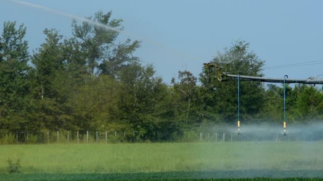 circular irrigation end sprinkler - aquifer stock videos & royalty-free footage