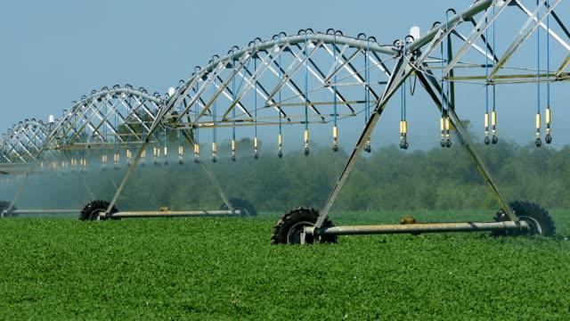 circular irrigation in motion - aquifer stock videos & royalty-free footage