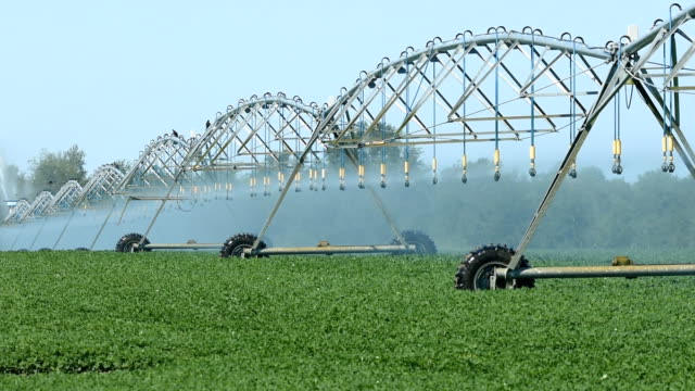 circular irrigation in operation with far end of system moving first - aquifer stock videos & royalty-free footage