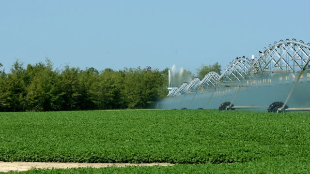 circular irrigation in operation with sections in motion - aquifer stock videos & royalty-free footage