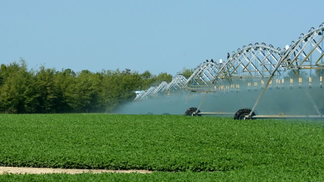 circular irrigation in operation with system in motion - aquifer stock videos & royalty-free footage