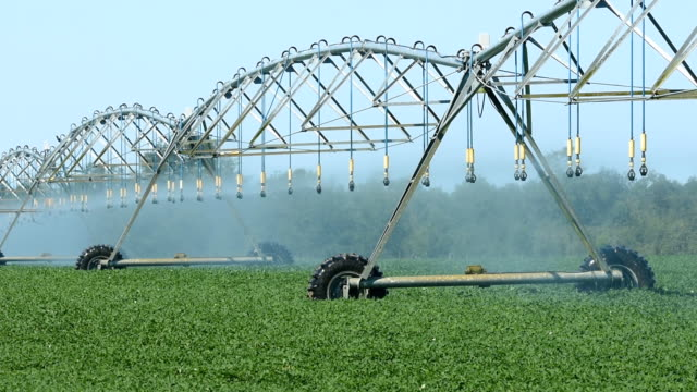 circular irrigation in operation with system moving - irrigation equipment stock videos and b-roll footage