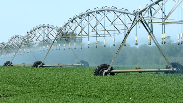circular irrigation watering crops - aquifer stock videos & royalty-free footage