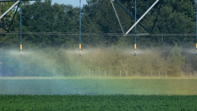 circular irrigation with rainbow colors from refracting light - aquifer stock videos & royalty-free footage
