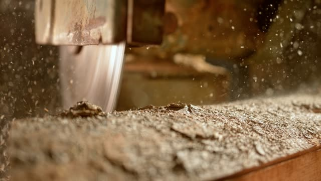 circular saw cutting a log - wood material stock videos & royalty-free footage